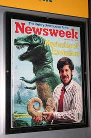 "Stephen Jay Gould Courtesy of Google ""free to use images""."
